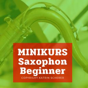 Minikurs-Beginner